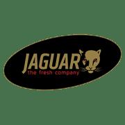 jaguar-tfc