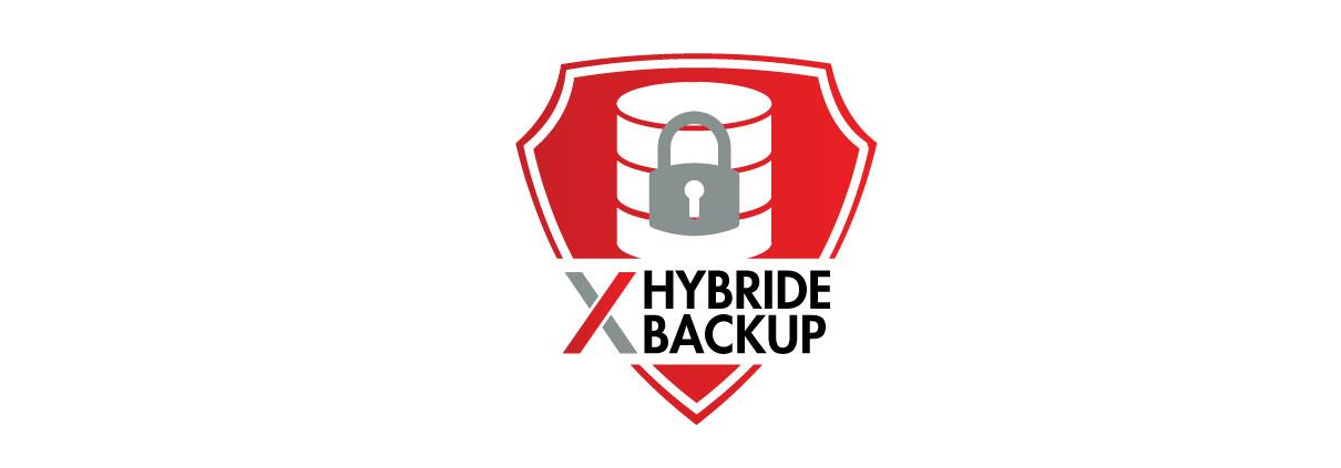 Hybride Backup Data
